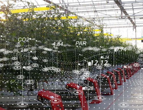 5G in horticulture: towards the autonomous greenhouse?